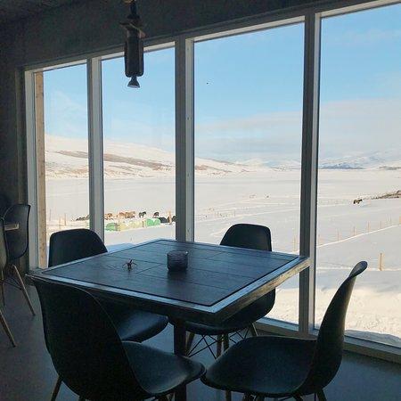 Akureyri, IJsland: Brunir Horse