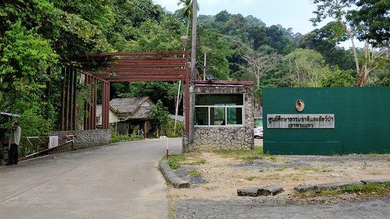 Khao Phra Thaeo National Park: Entrée