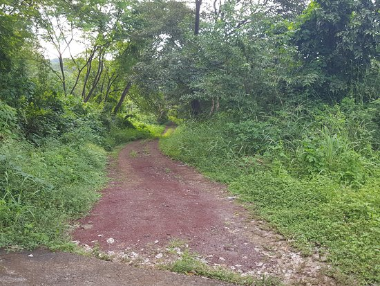 Granada, Nicaragua: lost in the jungle, cant find butterfly reserve