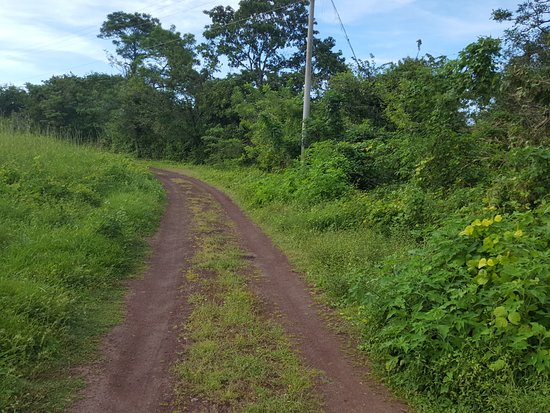 Granada, Nicaragua: seriously, this is where the map says the butterfly reserve is, it is not