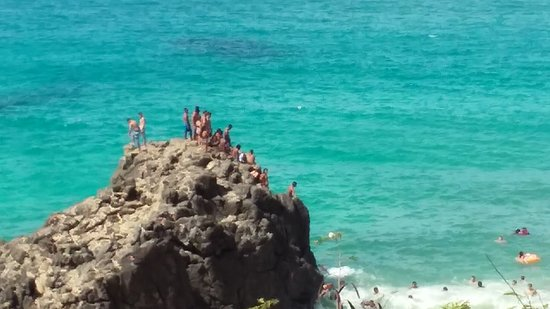 Bilde fra Oahu's North Shore