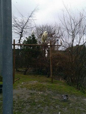Parc Zoologique de Fort Mardyck