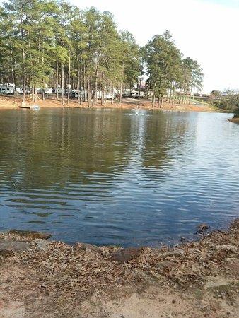 Forsyth, GA: 20180310_162540_large.jpg