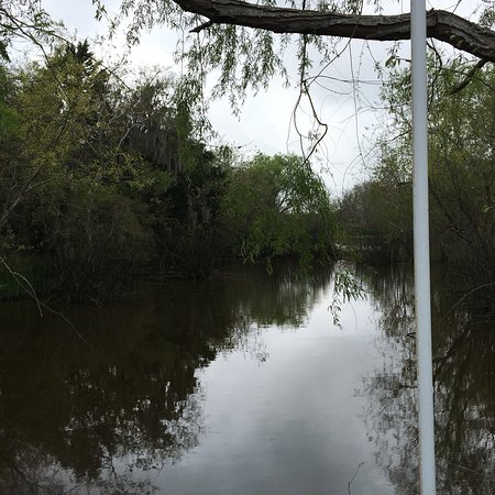 Brazoria, เท็กซัส: photo3.jpg