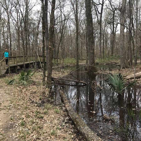 Walter B Jacobs Memorial Nature Park: photo0.jpg