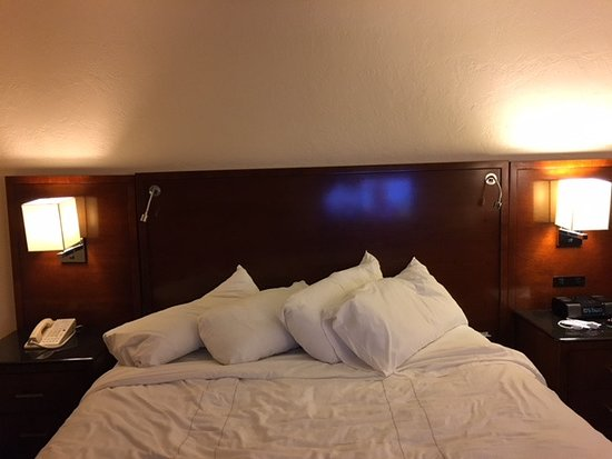 Palm Beach Gardens Marriott : Large king size bed