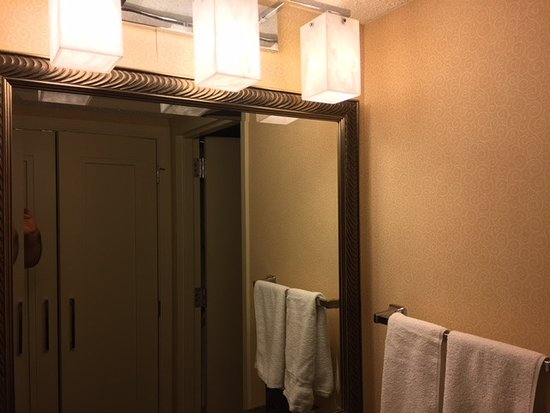 Palm Beach Gardens Marriott : Bathroom area