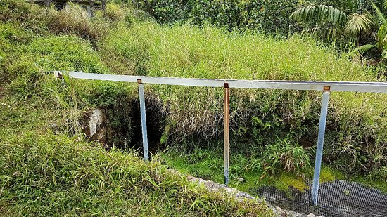 Matouba, Guadeloupe: 20180309_102536_large.jpg