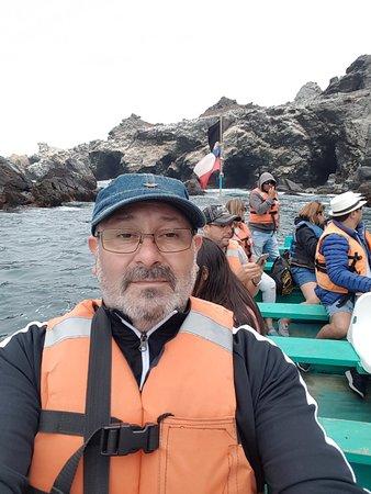 Punta Choros, Chile: Punta de choros