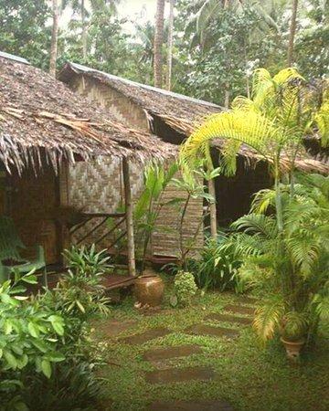 The Hut  Lanta Picture