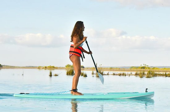 Sunrise Paddle Board Tour
