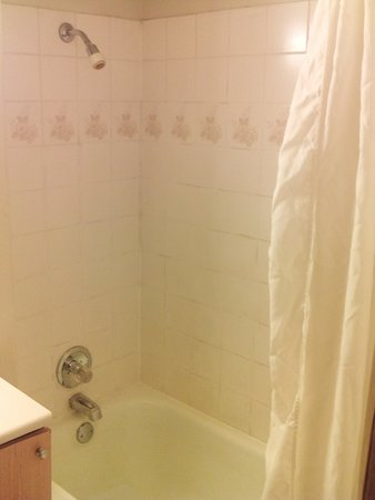 City Centre Motor Hotel: Shower/tub combo - use your own towels if you have them - thin towels.