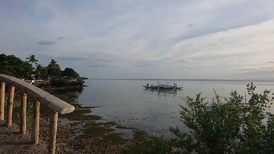 Cabilao Island, Filipina: IMG-9f508ef16a6d1450b3cbdc60b0753e2b-V_large.jpg