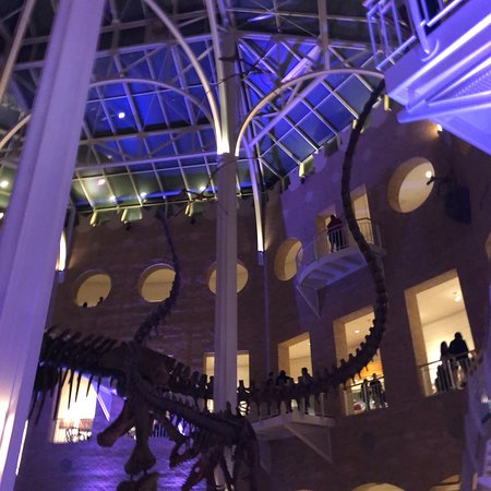 Fernbank Museum of Natural History : photo0.jpg