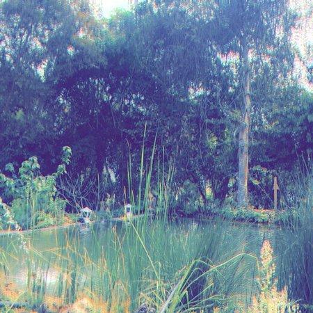 禪南姆康精品度假村照片