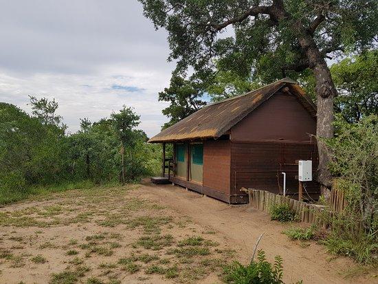 Timbavati Private Nature Reserve, Güney Afrika: eins der Zelte (alle gleich!)