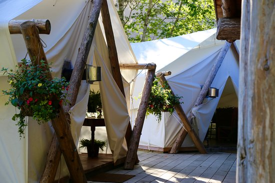 Clayoquot Sound, Canada: Dining Tents