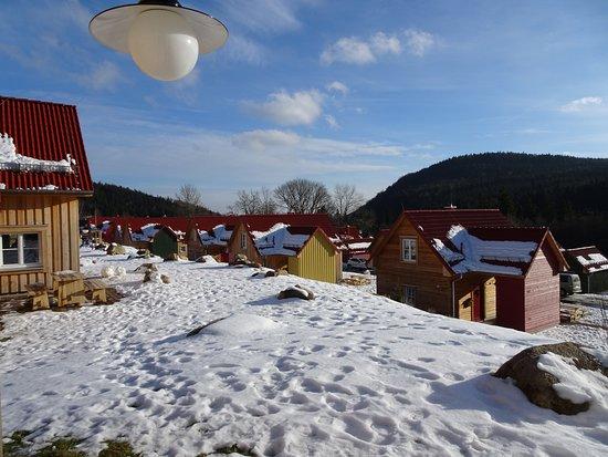 Schierke, ألمانيا: Blick von der Terrasse aus