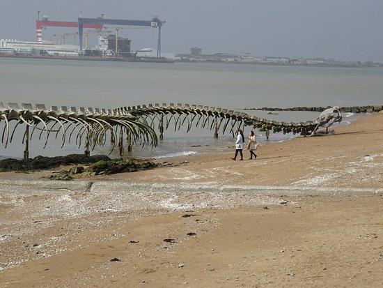 Le Serpent d'Océan照片