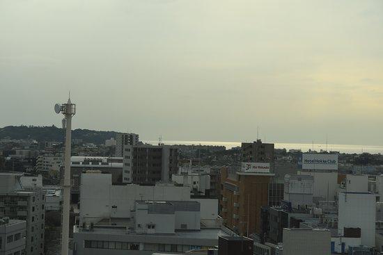 Fujisawa City Hall Observation Deck