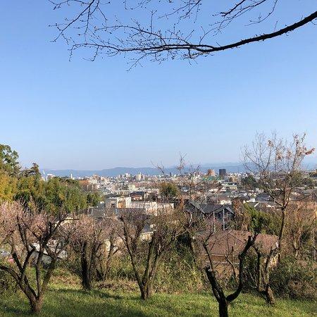 Tatsuta Natural Park