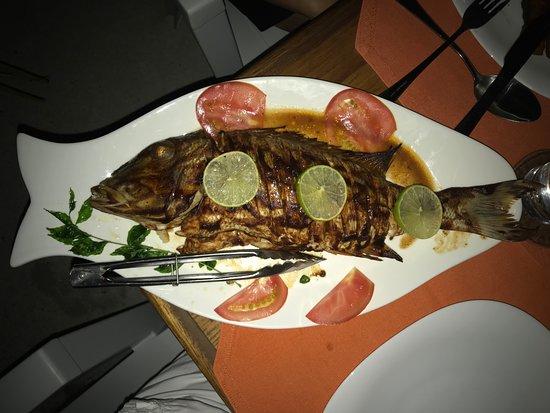 Гураидхоо: Local fish meal :)