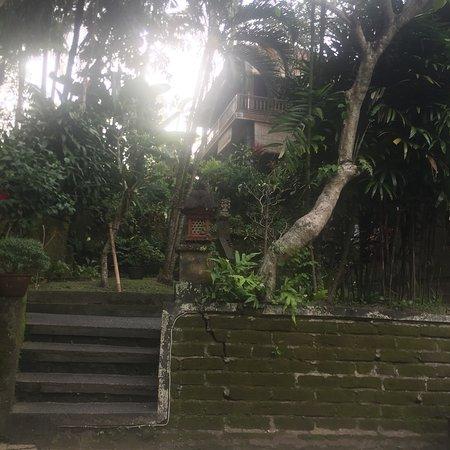Kebun Indah: photo1.jpg