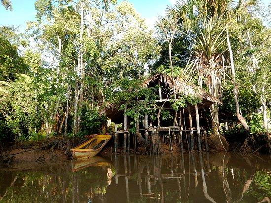 Orinoco Delta, Venezuela: arrivee sur le site!