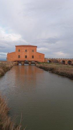 Casa Rossa Ximenes: vista dall'entrata della riserva