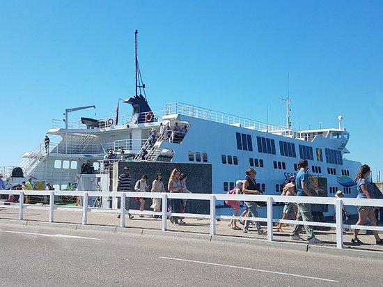 Searoad Ferries: 20180310_135324_large.jpg