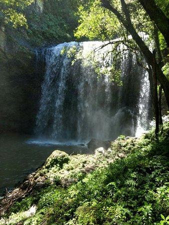 Caxias Do Sul, RS: Não tem tranquilidade maior do que visitar este lugar incrível...paga R$ 5,00 por pessoa...a tri