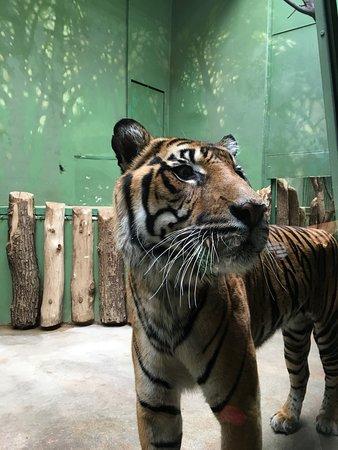 Zoo Praha: photo2.jpg