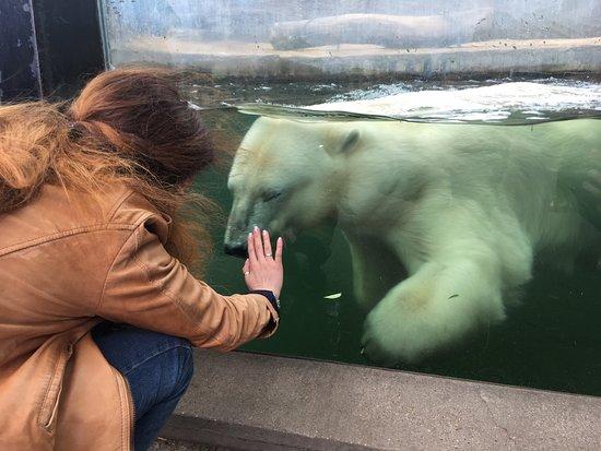 Zoo Praha: photo3.jpg