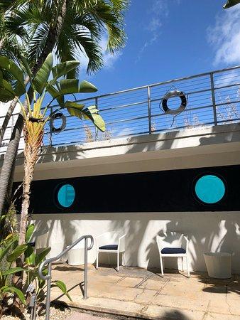 Albion South Beach: photo0.jpg
