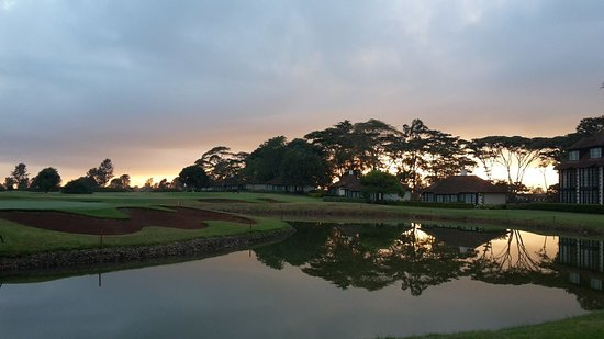 Windsor Golf Hotel and Country Club: Sunrise from hotel terrace