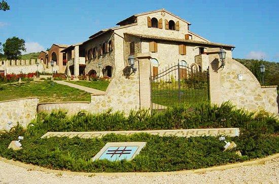 Antico Borgo Carceri: Ecco l'ingresso del nostro borgo: benvenuti !