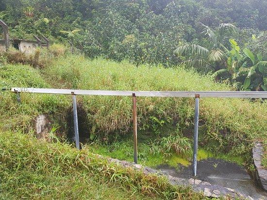 Matouba, Guadeloupe: 20180307_111753_large.jpg