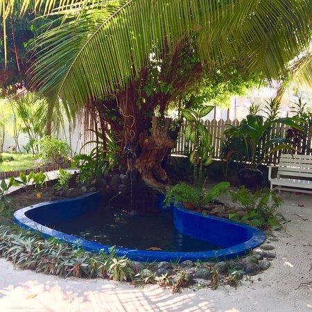 Haa Alif Atoll: photo4.jpg