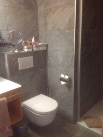 Les Hauderes, Schweiz: shower. other rooms have a bath tub