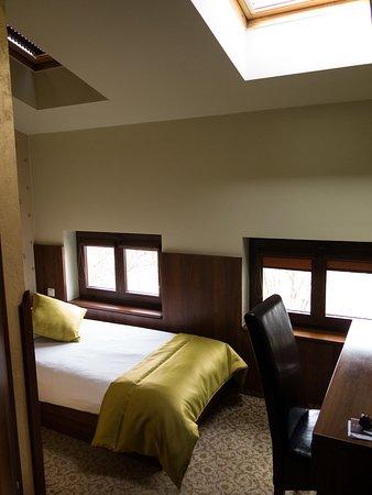 David Boutique Hotel: Single room with overhead skylight windows