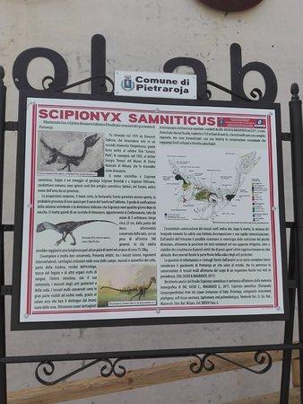 Pietraroja, Italy: Panel que se encuentra en la entrada y da las características de la cría de dinosaurio encontrad