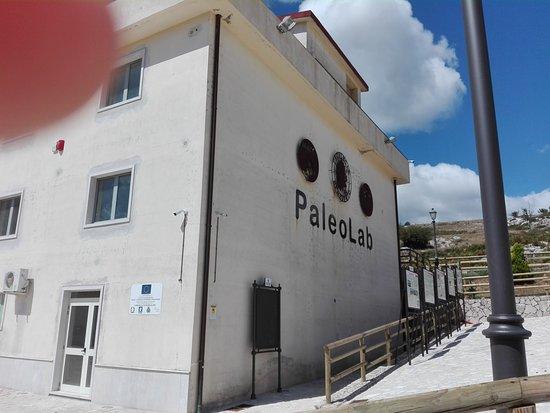 Pietraroja, Italy: El Paleolab