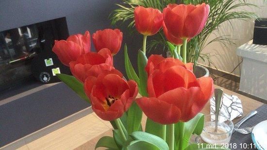 Gistel, Belgien: Mooie verse bloemen. En zie je de open haard?
