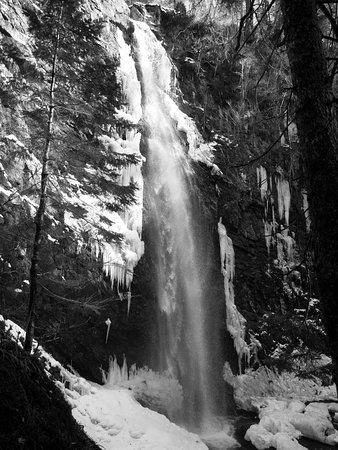 Plodda Falls: FB_IMG_1520792178336_large.jpg
