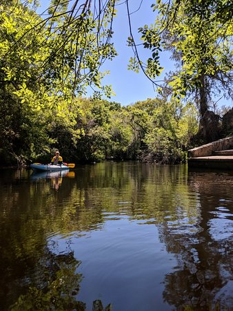 Canoe Outpost - Little Manatee River: IMG_20180309_111316_large.jpg