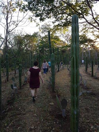 Santa Rosa, Kostaryka: Walking the labyrinth
