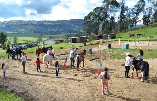 Bosque Ecuestre & Valle del Pony