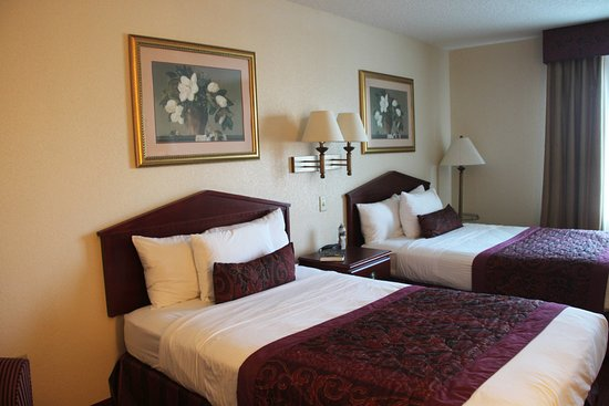 Wingate by Wyndham St Augustine: Our Room