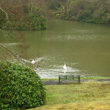 Llangammarch Wells, UK: photo4.jpg
