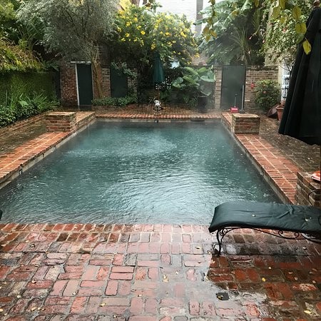 Audubon Cottages: Heated Pool still really warm in December!